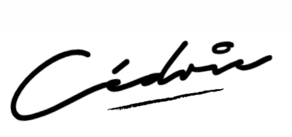 my working way signature